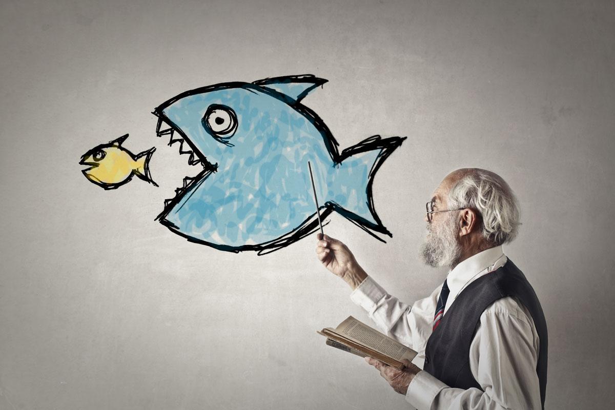 Be_the_Big_Fish_Senior_Living_Provider.jpg